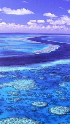 Great Barrier Reef Australia Australia Alaska and Africa on my AAA trip list... Haven't done any of those.