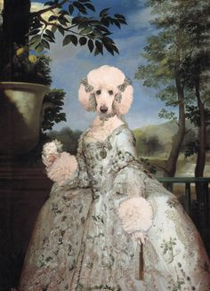 Tonight Bella presents us with a lovely portrait of Marie Poodleise of Parma, dated from 1765. She was a beautiful, privileged Princess, renowned by her curly hair and the fact that she did not shed. The model I used for this interpretation is the Standard Poodle Ai, from my Pinterest friend Yoko Ito-san. Ai is a fluffy, happy and kawaii Japanese girl and I wish I can meet her one day!