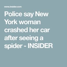 Police say New York woman crashed her car after seeing a spider - INSIDER New York Police, New Drivers, Spider, Articles, Woman, Sayings, Car, Spiders, Automobile