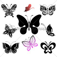 Set Of Tattoo Butterfly