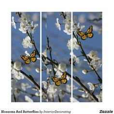 Liven up the walls of your home or office with Flowers wall art from Zazzle. Check out our great posters, wall decals, photo prints, & wood wall art. Triptych Wall Art, Wood Wall Art, Wall Art Decor, Blossoms, Flower Art, Illusions, Wall Decals, Butterflies, Flowers