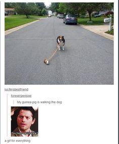 supernatural lol | Tumblr