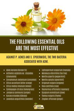 Best Essential Oils for Acne, According to Science Home Remedies For Acne, Acne Remedies, Tea Tree Oil For Acne, Oregano Oil, Essential Oils For Skin, Peppermint Oil, Melaleuca, New Tricks, Studying