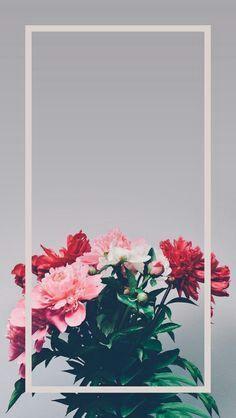 Wallpaper cellmobile wallpaperBeautiful background for mobile. Cute Wallpaper Backgrounds, Flower Backgrounds, Aesthetic Iphone Wallpaper, Flower Wallpaper, Nature Wallpaper, Cool Wallpaper, Mobile Wallpaper, Aesthetic Wallpapers, Cute Wallpapers
