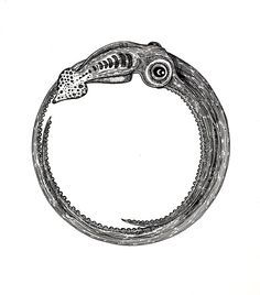How cool would this be as a bracelet