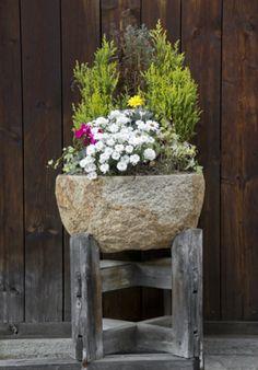 carved rock pot plants