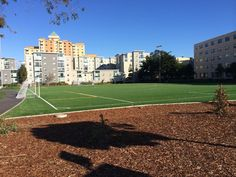 San Francisco State University Soccer field where we do warm-up drills. San Francisco State University, Track Workout, News Track, Track And Field, Drills, Soccer, Warm, Futbol, Track Field