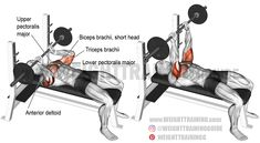 Barbell JM press exercise instructions and video Step Up Workout, Squat Workout, Plank Workout, Triceps Workout, Workout Guide, Squat Exercise, Excercise, Best Shoulder Workout, Best Chest Workout