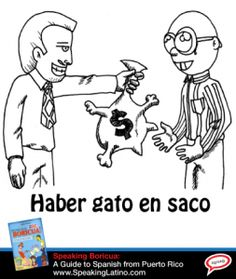 HABER GATO EN SACO: Spanish Slang Expressions With The Word CAT