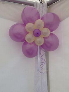 Rozetten, bloem gemaakt van ballonnen..
