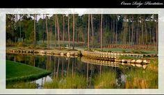 Lion's Paw Golf Link - Myrtle Beach - (public)