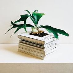 I find so many incredibly gorgeous, clever ways to reuse books. And someday I may be able to bring myself to cut a book.  Maybe.  No promises, though.