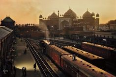 The Iconic Photographs, Steve Mccurry