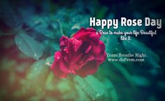 Happy Rose Day  A rose to make your life beautiful like it.  Team Breathe Right www.daPrem.com #Love #Romance #Relationship #ValentineTips #ValentineWeek #Lifecoach #Breathe #Right #Mentor #BreathingGuru #LoveGuru #RelationshipExpert #Uk #Us #daPrem #VaastuConsultant  #Roseday #FengShuiExpert #FengShuiLifecoach #RomanceCouple #RelationshipLoving #Australia #Love #Yoga