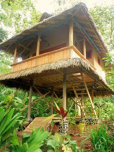 Drake Bay Costa Rica Hotels | Copa De Arbol Beach and Rainforest Resort