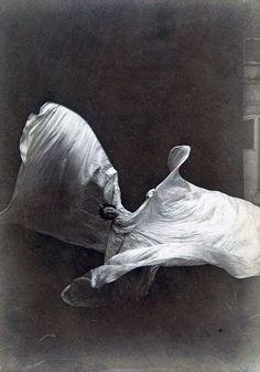Marie Louise Fuller est née à Chicago en 1862 et après des débuts comme actrice alors qu'elle n'était encore qu'une enfant, elle se passionne très vite pour la danse et la chorégraphie. Elle n'essaie pas de suivre un parcours de formation classique, mais invente de nouvelles formes de danse libre entourée de longs voilages de …