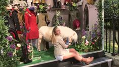 Teddy on the Welligogs stand at the RHS Chelsea Flower Show 2018 Chelsea Flower Show 2018, Rodeo, Cute, Flowers, Kawaii, Florals, Rodeo Life, Flower, Blossoms
