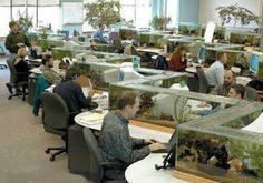 I would love to work here.   Fish tank cubicles - relax more at work.