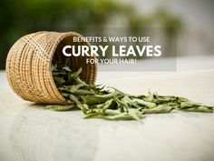 Curry Leaves for Hair Growth & Hair Health - Beauty Junction Online Memory Test, Healthy Foods, Healthy Recipes, Curry Leaves, Indian Dishes, Hair Health, Hair Growth, Health And Beauty, Punch