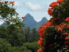 Vista de Madame Machado (Foto: Deunice Ximenes)