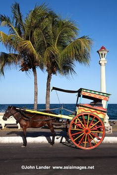 Philippines Calesa or Horse & Buggy