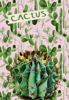 Nuevas láminas imprimibles con el Cactus como protagonista, la planta más de moda.