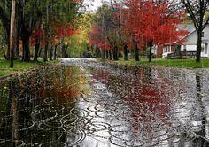 https://lh3.googleusercontent.com/-XdWkwWXAZOY/UrrO92bDlAI/AAAAAAAA5AM/1PrnDp-w7n8/w426-h300/Keeps+on+raining.gif