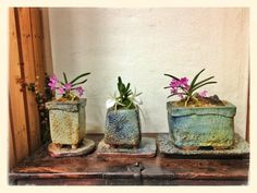 Pottery flower pots made by my uncle.