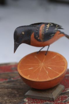 50 Little Birds on the Northern Forest Canoe Trail | Indiegogo