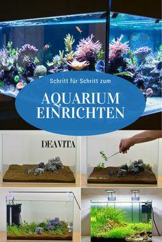 Als Deko in diesem Aquarium dienen Korallen-Imitationen | Zen ...