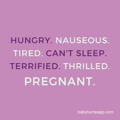 Hungry. Nauseous. Tired. Can't Sleep. Terrified. Thrilled. Pregnant. All of this and so much more!