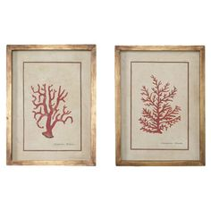 Found it at Wayfair - 2 Piece Hand Painted Coral Framed Art Set