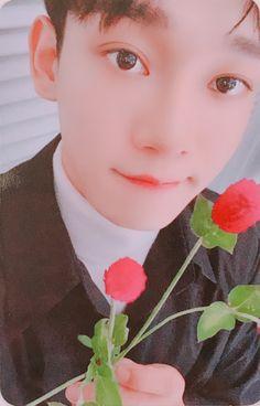 "Chen - ""Dear my Dear"" photocard Exo Chen, Suho Exo, Kaisoo, Cute Bunny Pictures, Exo 12, Dear Me, Kim Jongdae, Exo Members, My King"