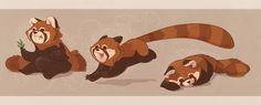 DeviantArt: More Like Red Panda Character concepts by beavotron Red Panda Cartoon, Red Panda Cute, Animal Sketches, Animal Drawings, Cool Drawings, Panda Illustration, Character Concept, Character Art, Character Design