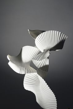 Richard Sweeney: Experimental pleat (Bird in Flight). Architecture Origami, Thomas Heatherwick, 3d Mode, Art Plastique, Installation Art, Sculpture Art, Paper Sculptures, Birds In Flight, Light In The Dark