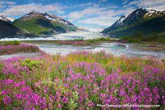 Spencer Glacier / Chugach National Forest, Alaska