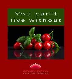 You can't live without  EVEREST - Vertical Farming