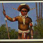 German Cigarette Card Album Colonies Africa w/270 cards Cameroon Togo Samoa Kiao - Africa, Album, Cameroon, card, Cards, Cigarette, COLONIES, German, Kiao, Samoa, Togo, w/270