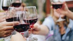 How Two Centuries of Failure Finally Birthed American Wine - Paste