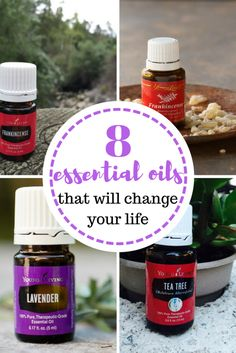 Essential oils that will change your life! Essential Oils, Essential Oil Uses, Lavender Oil, Frankincense Oil, Tea Tree Oil, Things to Do With Essential Oils, Natural Living, Natural Living Tips and Tricks.