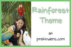 rainforest theme