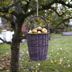 baskit fruit or flowers to take as you go bye,  Sign on tree ~Take One