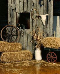 Yes! I will be decorating Hadley's barn! Luther will always have something to look at :) horse problems