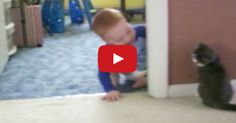 "Cat Teaches Baby How To Play ""Peek-a-Boo"""