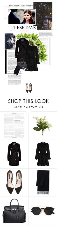 """The kids don't stand a chance"" by chrissykinz ❤ liked on Polyvore featuring Grace, Coleman, Haze, Pier 1 Imports, Burberry, Zimmermann, Zara, Uniqlo and Christian Dior"