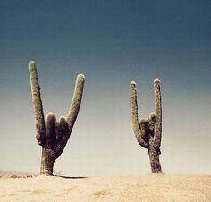[Desert Rock, Kyuss]