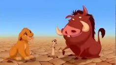 videos infantil de timon y pumba - YouTube