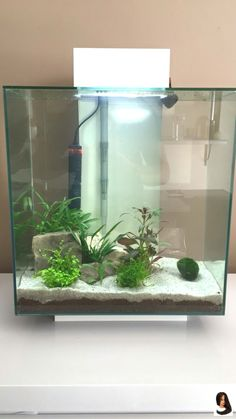 Is your life full of stress and worry? Do you have high blood pressure or insomnia? Getting a cool aquarium may be a great way… Aquarium Setup, Home Aquarium, Aquarium Design, Unique Fish Tanks, Cool Fish Tanks, Betta Fish Tank, Aquarium Fish Tank, Aquascaping, Fish Tank Themes