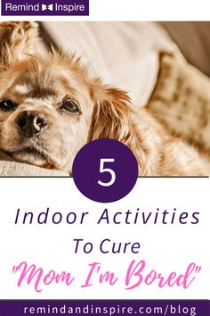 Try one of these family fun activities with your kids next time your stuck at home. Weather bad? No problem! All ideas to keep kids busy can be done inside.  #familytime #bored #indooractivities Indoor Activities For Kids, Activities To Do, Summer Activities, Toddler Activities, Forever Memories, All About Mom, Kids Laughing, Indoor Play, Family Night