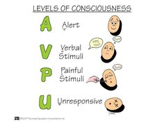 Nursing Mnemonics and Tips: Levels of Consciousness